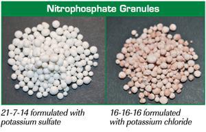 Nitrophosphate Fertilizer Market