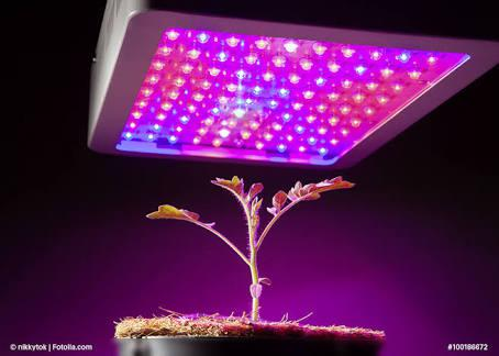 Horticulture Lighting Market Trend Shows 20.61% CAGR to 2023: