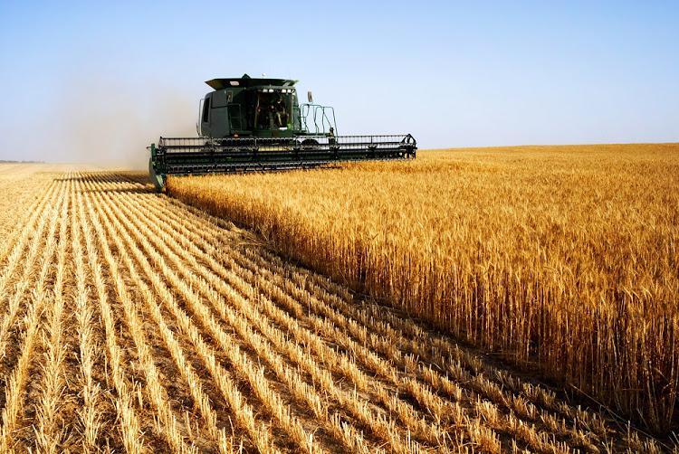 Agricultural Crop