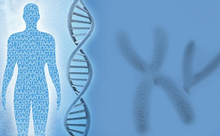 Global Next-Generation Sequencing Market in Healthcare