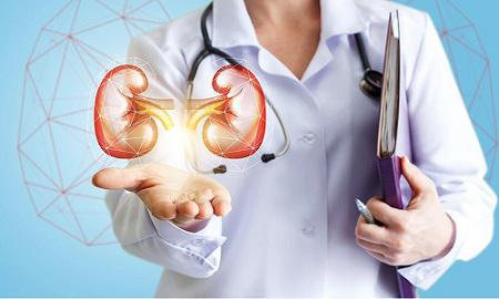 Urology Devices Market Global Industry Growth Trends, Market