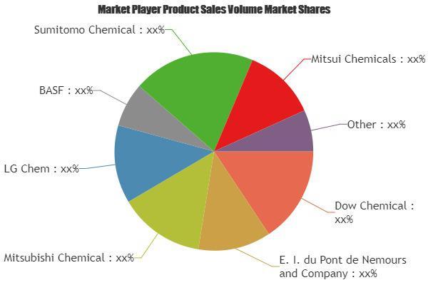 Potassium Chlorate Market