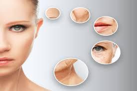 Anti-Aging Drugs and Devices Market
