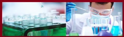 Global Bio CMO Market Analysis