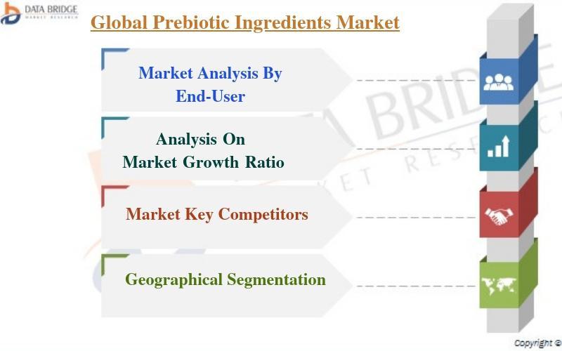 Global Prebiotic Ingredients Market