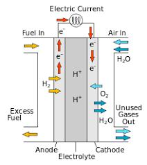 Research report explores the Global Fuel Cell Market tremendous
