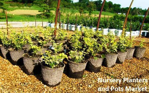 Nursery Planters and Pots Market, Nursery Planters and Pots Market Player, Nursery Planters and Pots Market Region