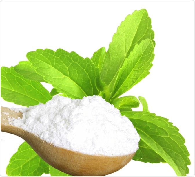 Stevia Market Growth Analysis and Trends 2026 By Key Players: