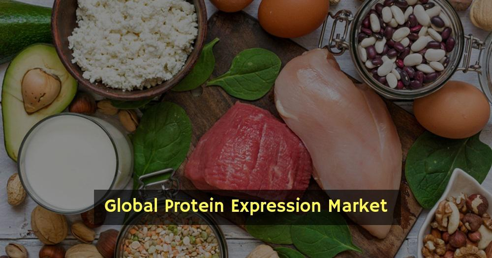 Protein Expression Industry Research Showing Good CAGR