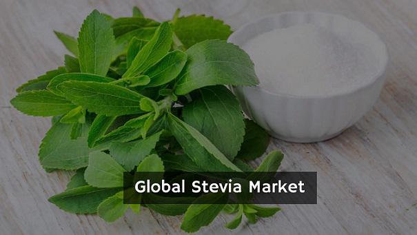 Stevia Market Outlook, Trend, Opportunity Analysis,