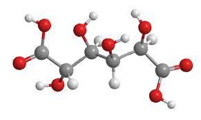 Glucaric Acid Market Brief Analysis By Top Key Players - Cayman