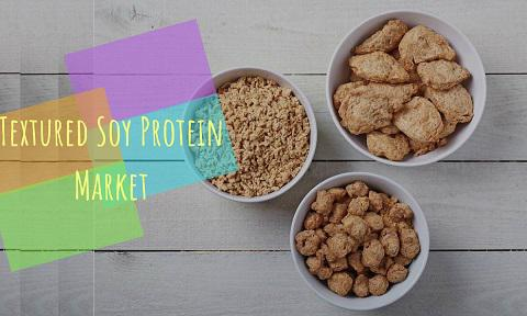 Global Textured Soy Protein Market