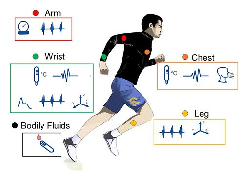 Wearable Medical Devices Market to 2025