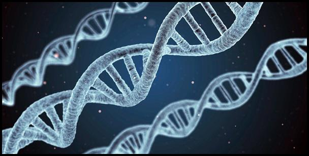 Genetic Testing Market Share Analysis - Global Industry Report 2024