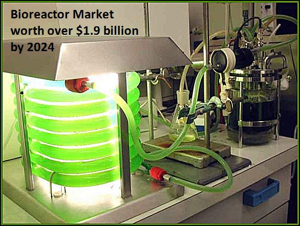 Bioreactor Market Size, Price Trends – Industry share Report 2024