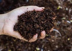 Organic Fertilizer Market