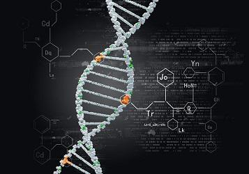 Biocatalysis & Biocatalysts Report