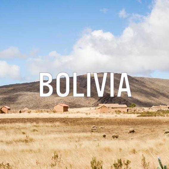 Bolivia: Country Intelligence