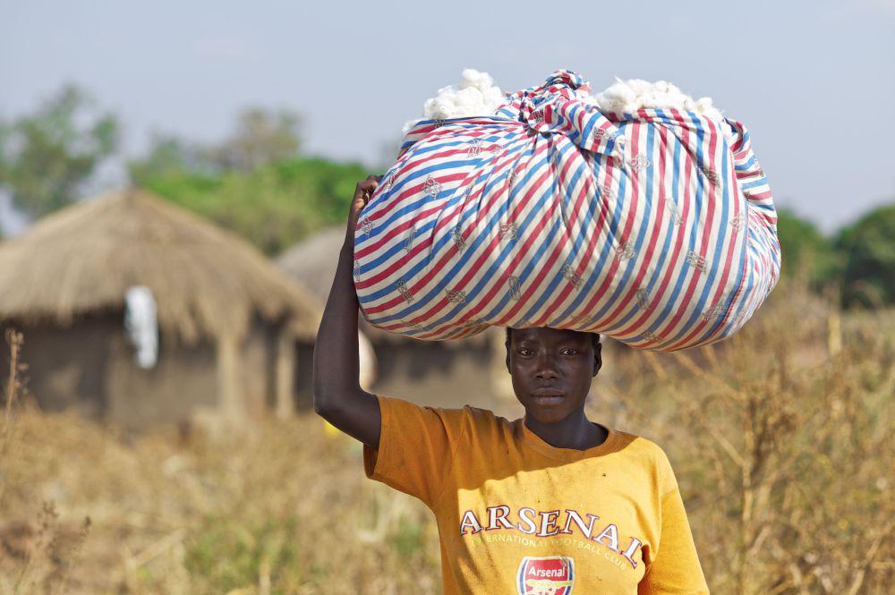 Harvest of fair-organic Cotona cotton in Uganda. credit: Klaus J.A. Mellenthin