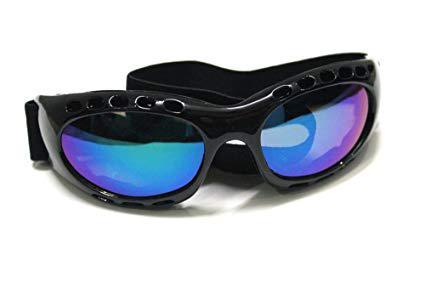 Sports Goggle Market