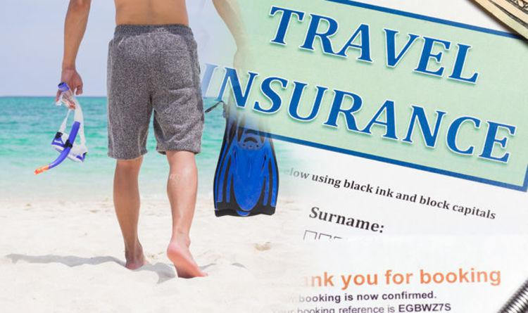 Future And Detail Analysis Of Travel Insurance Industry
