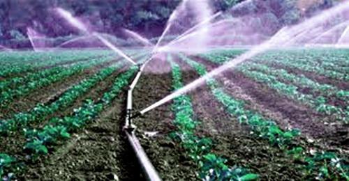 Microirrigation System Market will be valued USD 12 billion