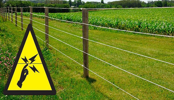 Electric Fencing Market Report 2018- 2025