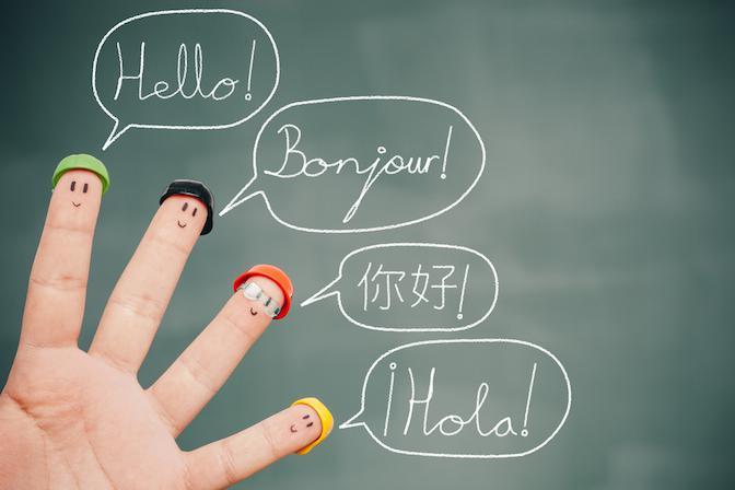 Multilingual Education services