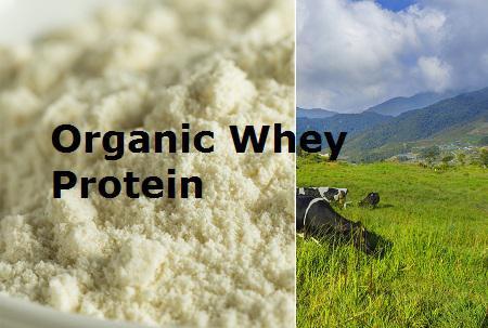 Organic Whey Protein MARKET