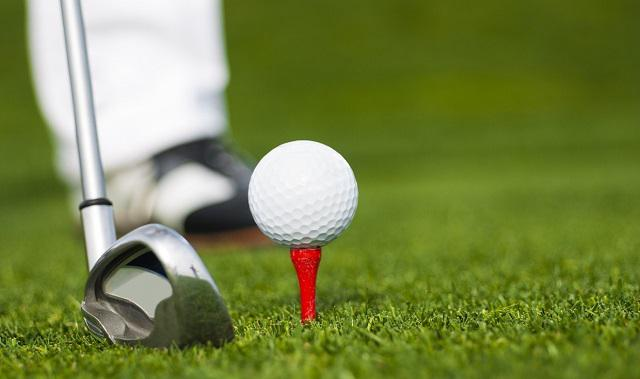 Golf Tees Market