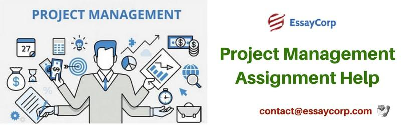 Achieve Your Desired Score in Project Management Assignment