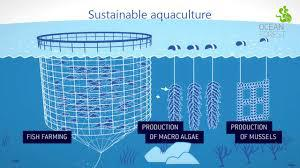 Aquaculture Market By Environment And By Fish Type To 2022 |