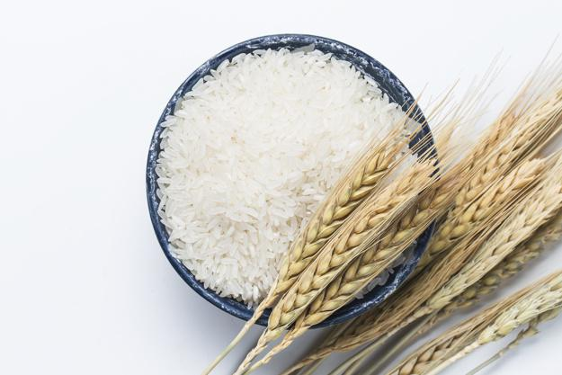 Global Rice Protein Market to grow by CAGR of 8.45% during