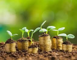 Global Carbon Offset and Carbon Credit Trading Service Market