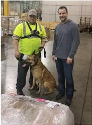 Oz flanked by his handler from Global K9 and Airfreight Manager Craig Cannizzaro