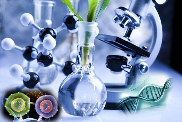 Biotechnology Instrumentation Market Report 2019-2025