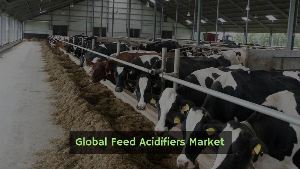 Feed Acidifiers Market Competitive Strategic Assessment