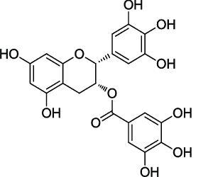 Global Epigallocatechin Gallate (EGCG) Market