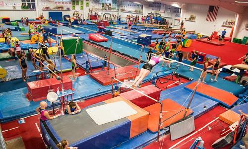 Global Gymnastics Equipment Market Revenue and Growth Forecast