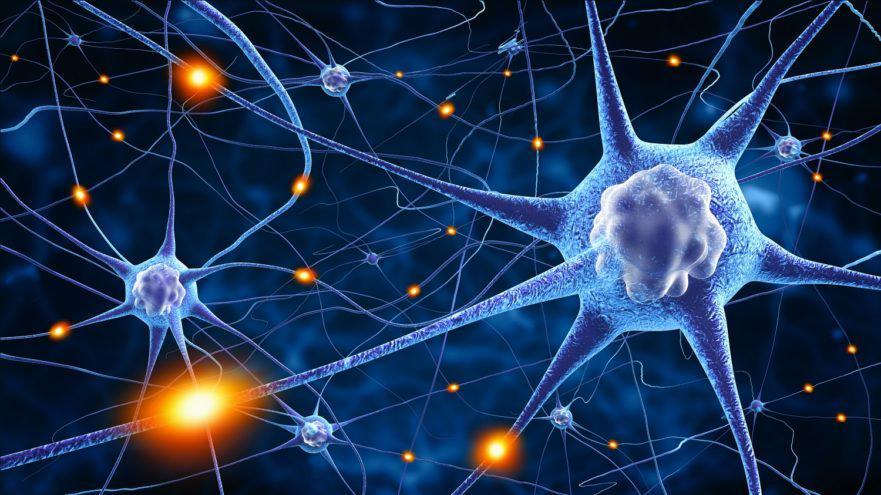 Neuroscience Market Globally Reach USD 34,800 million by 2024
