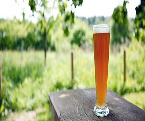 Global Weissbier Market
