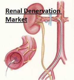 Renal Denervation Market