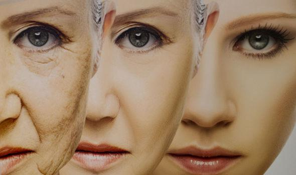 Anti-Aging Market Analysis and Outlook