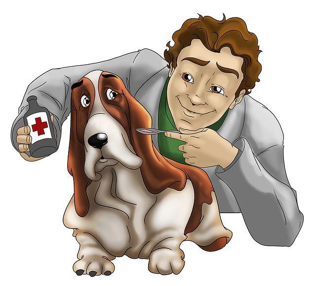 Veterinary Molecular Diagnostics MarketScenario with Top