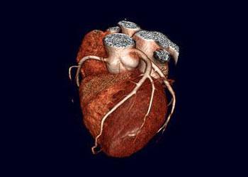 Cardiac Marker Testing Devices Market