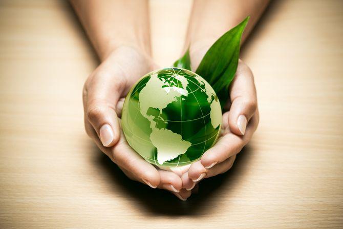 Green and Bio Polyols Market