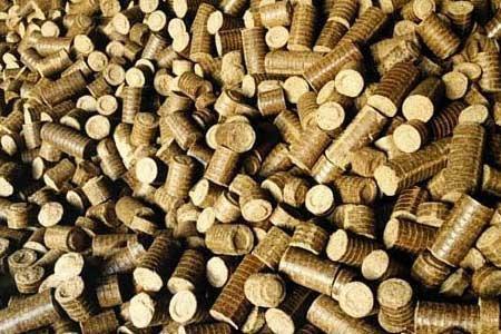 Biomass Briquette Fuel Market