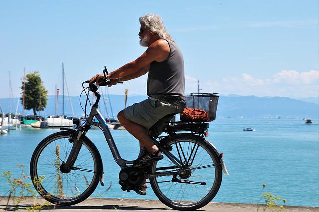 Electric Bicycles Market 2019