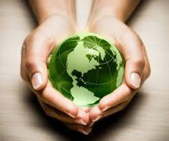 Environmental Consulting Services