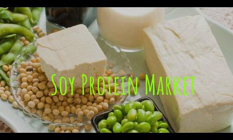Global Soy Protein Market